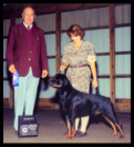 Cooper at the Holland Michigan K.C. taking Winners Dog on October 17th, 1998, handled by Ms. Holley Eldred