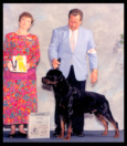 Cooper at the 1997 Colonial Rottweiler Club (CRC) in the Open dog class taking a 3rd place, handled by Mr. Rodger Freeman, under Breeder-Judge Ms. Karen Riddle of Von Riddle Rottweilers