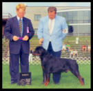 Cooper at the Greater Racine K.C. taking Winners Dog on Aug. 10th, 1997, handled by Mr. Rodger Freeman, under Judge Mr. William Paul Shelton