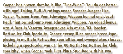 "Cooper has proven that he is like ""Fine-Wine""; You do get better with age! Taking Multi-V ratings under Breeder-Judges; like Xavier Meixner from Vom Schwaiger Wappen kennel and Josef Hedl, that owned Santo vom Schwaiger Wappen. An added bonus was A Best in Veteran Sweepstakes win at the 2003 Hoosier Rottweiler Club Specialty Show. Cooper exemplifies proper breed type, placing in multiple Rottweiler specialties and sweepstakes classes. Including a spectacular win at the 2000 North Star Rottweiler Club Specialty, when Cooper took First Place Stud Dog with his two"