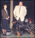 Dylan taking Winners Dog in Columbus Ohio handled by Rodger Freeman