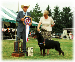 """Gates"" taking Best in Specialty Show (BISS) at the Sovereign Rottweiler Club of Ontario at Woodstock, Canada the Oxford Co. K.C., on July 12, 2008 judged by Mr. Peter Dawkins, handled by Pat Turner, over BIS/BISS top 10 specials"
