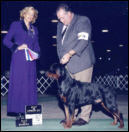 Gates taking Winners Dog, Best of Winners, & Best of Opposite Sex, at Ingham Co. K.C., on 11-28-05, handled by Rodger Freeman, under Judge Mrs. Patti Widick Neale
