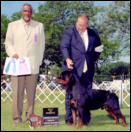 Gates & Rodger Freeman, taking an ARC Regional VII Specialty Best of Winners & Winners Dog, for a 4 point major, from the 12-18 month class, at the Badger State Rottweiler Fanciers, in Milwaukee WI, on 7-29-05, under Judge Mr. Bill Lee