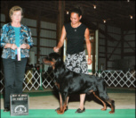 """Gates"" winning BOB at the Berrien K.C. on 8/3/07, with his handler Lynette"