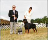 """Gates"" and handler Lynette taking Best of Breed at Lexington, KY"