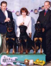 Von Baker Rottweilers - MRC - Stud Dog Winner