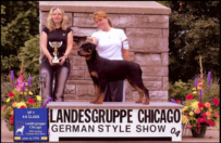 """""""Gotham"""" at Landesgruppe Chicago German-style show '04, taking VP-1, from 4-6 month class, handled by Holley Eldred"""