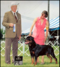 """""""Gotham"""" taking BOW/WD for his 1st major at Grand Rapids K.C. '06, handled by Lynette Lomason"""