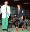"""""""Gotham"""" taking BOW/WD at Livonia KC '06, handled by Lynette Lomason"""