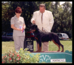 Best of Opposite Sex, Best of Winners, Best Puppy in Breed, 3pt major from 6-9 month puppy dog class, Pontiac K.C. on Aug. 19, 2000, handled by Rodger Freeman