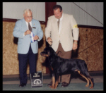 Best of Winners, Winners Dog, Berrien K.C. on June 24, 2001, judge Mr. James White, handled by Rodger Freeman
