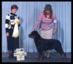 CKC - Group 3 from the classes for 5 pts & New Canadian Champion at Kent K.K. in April 2003, judge Ms. Shirley Limoges, handled by Pat Turner