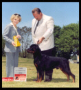 3rd Place 12-18 month dog, Colonial Rottweiler Club Specialty in May 2001, handled by Rodger Freeman