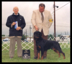 Best of Winners, Winners Dog, 1st Place 12-18 month dogs, Kalamazoo K.C. on May 27, 2001, handled by Rodger Freeman