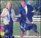 Maddie at the 2005 MRC Specialty, taking 1st place, from the 6-9 puppy class, handled by Rodger Freeman