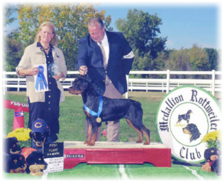 VonBaker's Naughty By Nature v Worthy, BOS, Multi-Best Puppy in Breed & Puppy Groups