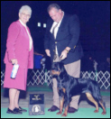 Maddie taking her 1st points, at the Greater Muskegon K.C., with Rodger Freeman, as Winners & Best of Winners, from the 6-9 month puppy class, on 11-11-05, under Judge Ms. Patricia W. Laurans
