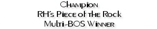 Ch. RH's Piece of the Rock, CGC, Multi-Best of Opposite Sex winner over specials