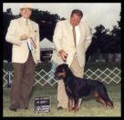 Tory at the Pontiac K.C. taking Best of Breed from the classes on Aug. 17, 2002, handled by Mr. Rodger Freeman, under Judge Mr. W. Stebbins