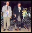 Tory at the Battle Creek K.C. taking Best of Breed from the classes on Oct. 20, 2002, handled by Mr. Rodger Freeman