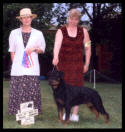 Tory in Canada at the Sarnia K.C. taking Best of Breed from the classes in July 2003, handled by Ms. Pat Turner