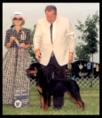 Tory at Dayton K.C. taking Best Puppy in Breed on June 30th, 2001, handled by Mr. Rodger Freeman, under Breeder-Judge Mrs. Betty Leininger