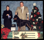 Tory at the Ingham County K.C. taking Best of Winners on Dec. 12, 2002, handled by Mr. Rodger Freeman