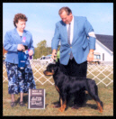 Tory at the St. Clair K.C. on Sept. 14, 2002 taking Best of Winners, handled by Mr. Rodger Freeman