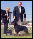 Tory at the Battle Creek K.C. taking BOS as a special on May 26, 2003, handled by Mr. Rodger Freeman