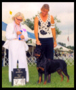 Turner at Ann Arbor K.C. taking BOS & BOW for points on July 4th, 2004, handled by Mrs. Norma Smith, under Judge Mrs. Patricia A. Gellerman